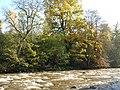 The River Allen (2) - geograph.org.uk - 598392.jpg