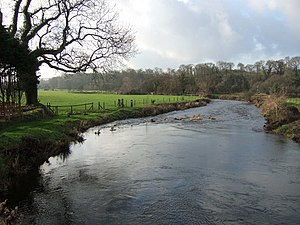 River Cleddau - The Western Cleddau at St Catherine's Bridge