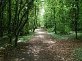 The Yorkshire Wolds Way - geograph.org.uk - 441886.jpg