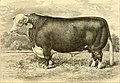 The breeds of live stock, and the principles of heredity (1887) (14780923892).jpg