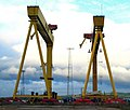 The most famous cranes in Belfast (1) - geograph.org.uk - 599214.jpg