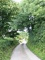 The road to Llwydiarth-Esgob - geograph.org.uk - 1399923.jpg