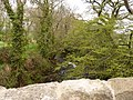 The view downstream from Pecketsford Bridge on the river Taw - geograph.org.uk - 1853364.jpg