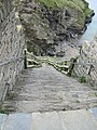 Tintagel Castle, Cornwall (461288) (9459285092).jpg