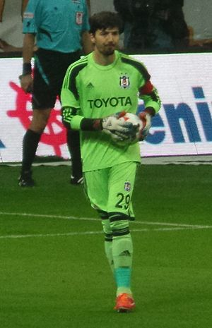Tolga Zengin - Zengin in 2014