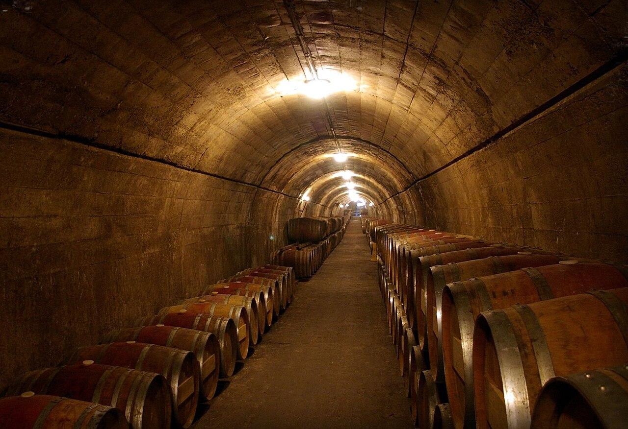 File:Torres wine cellars.jpg  Wikimedia Commons