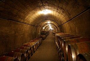 Catalan wine - Wine cellars of Catalan winery Torres.