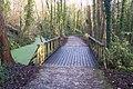 Trackbridge in Oare Gunpowder Works - geograph.org.uk - 1621584.jpg