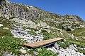Trail in Chamonix 6.jpg
