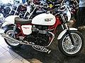 TriumphThruxton900cc.JPG