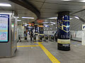 TsukubaStationGate.JPG