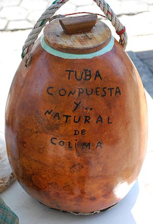 "Colima City - Traditional container for a drink called ""tuba"" made from the flower from a type of palm tree"