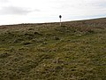 Tumulus at Chew Green - geograph.org.uk - 381571.jpg