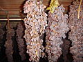 Tuscany Vin Santo white Trebbiano grapes being dried.jpg