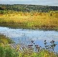 Tuyau qui draine l étang du lac Brompton - panoramio.jpg