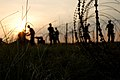 US Navy 070614-N-0553R-001 Seabees stationed with Naval Mobile Construction Battalion (NMCB) 1 begin laying concertina wire as the battalion prepares to start the tactical portion of their field exercise.jpg