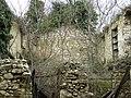 Unutar kuće - ruševina - panoramio.jpg