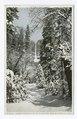 Upper Yosemite Falls, Winter, Yosemite, Calif (NYPL b12647398-73920).tiff