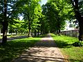 Uzvaras bulvaris - aleja - panoramio (3).jpg