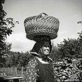 """V takem """"jerbasu"""" so ženske z Vipavskega nosile jajca, kokoši in maslo v Trst, razno sadje pa v Idrijo, Cerkno, Logatec in drugam 1958.jpg"""