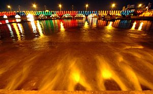 Vaigai River Illumination.jpg