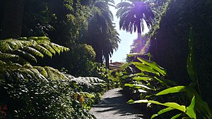 Jardin botanique exotique de Menton - Image: Val Rahmeh 1
