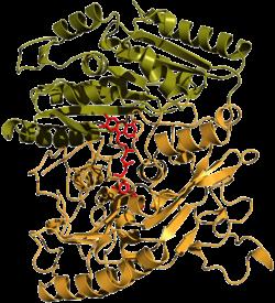 Vanillylalkohol-Oxidase (Penicillium simplicissimum)