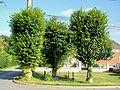 Ver-sur-Launette (60), hameau de Loisy, calvaire mutilé au sud du hameau.jpg