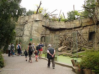 Antwerp Zoo - Enclosure for mandrils