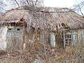 Verhuny, Poltavs'ka oblast, Ukraine, 37873 - panoramio (74).jpg