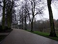 Victoria Avenue riverside walk - geograph.org.uk - 1726835.jpg