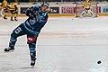 Vienna Capitals vs Fehervar AV19 -13.jpg