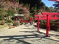 View of Hakuryu Inari Shrine near Sea Hell Hot Spring.JPG