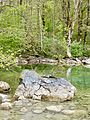 WLE 2017 Obersee 6.jpg