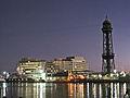 WTC i telefèric, de nit.jpg