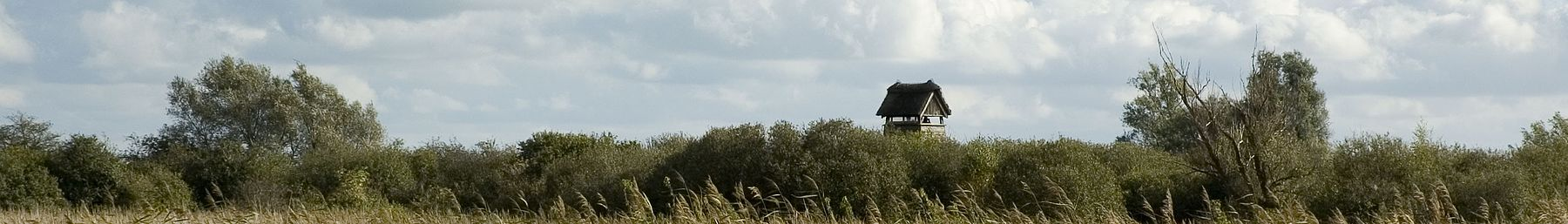 WV banner Cambridgeshire Wicken Fen.jpg
