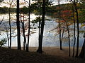 Walden Pond in October, Concord MA.jpg
