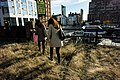 Walking through the future Section 3 of New York's High Line Park.jpg