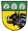 Wappen Hochstaett.png
