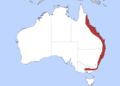 White-headed Pigeon map with state borders.png
