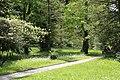 Wiese unter Baeumen Botanischer-Garten Muenchen-1.jpg