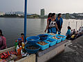 Wonsan, DPRK (14813783086).jpg