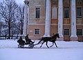 Yar horse.jpg