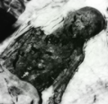 Z-West Dowager Empress's Corpse.PNG