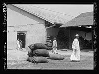 Zanzibar. Bags of cloves for exportation LOC matpc.17681.jpg