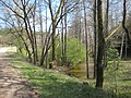 Zarasų sen., Lithuania - panoramio (82).jpg