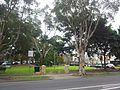 Zetland NSW 2017, Australia - panoramio (39).jpg