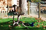 Zoo de Lisboa by Juntas 5.jpg