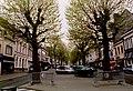 Zottegem Heldenlaan Gekandelaarde platanen (6) - 190547 - onroerenderfgoed.jpg