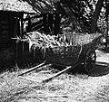 """""""Šajtrga"""" za futer vozit. Blečji Vrh- Gradec pri Peskarji 1949.jpg"""
